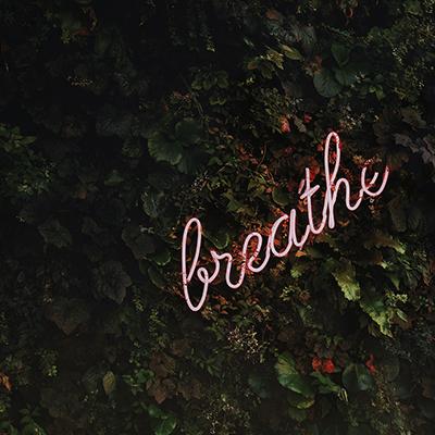 breathe google small - Як заспокоїти дихання за допомогою Google